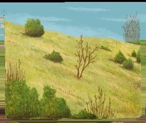 pelouses-calcioles-icon