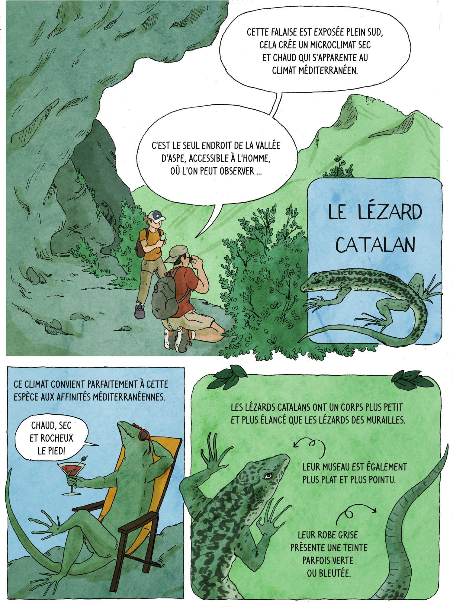 lezard2018-3